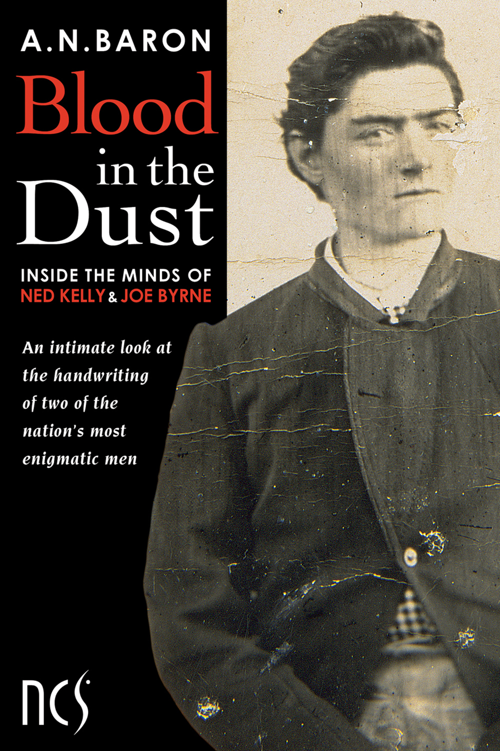 Blood in the Dust by A.N. Baron